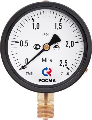 ТМ-510 IP54 манометр в специальном исполнении IP54 РОСМА