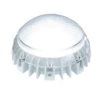 Светодиодные лампа АЛТАЙ 10 Duray